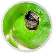 Frog's Eye Round Beach Towel by Kaye Menner
