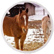 Frolicking In The Snow  Round Beach Towel