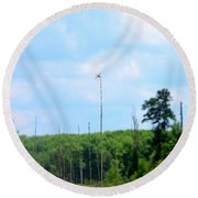 From A Dragonfly's Point Of View Round Beach Towel