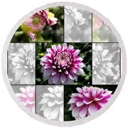 From Bud To Bloom - Dahlia Named Brian Ray Round Beach Towel