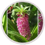 From Bud To Bloom - Eucomis Named Leia Round Beach Towel