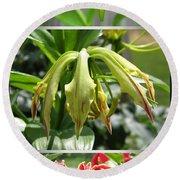 From Bud To Bloom - Gloriosa Named Rothschildiana Round Beach Towel