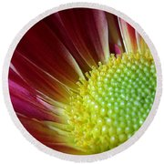 From The Florist Round Beach Towel