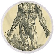 Front Of Male Human Body.anatomical Round Beach Towel