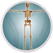 Front View Of Human Skeletal System Round Beach Towel