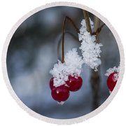 Frost Berries Round Beach Towel