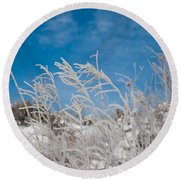 Frost Covered Grasses Against The Sky Round Beach Towel