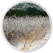 Frost Flakes On Ice - 13 Round Beach Towel