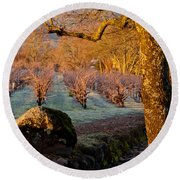 Frost In The Valley Of The Moon Round Beach Towel