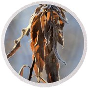 Frosted And Wilted Round Beach Towel