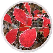 Frosted Blueberry Leaves Round Beach Towel