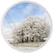 Frosted Copse Round Beach Towel by Anne Gilbert