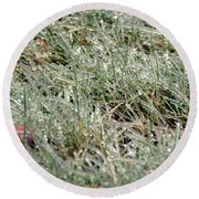 Frosted Grass Round Beach Towel