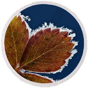 Frosted Leaf Round Beach Towel