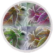 Frosted Maple Leaves In Warm Shades Round Beach Towel