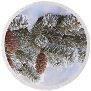 Frosted Pine Tree And Cones 1 Round Beach Towel