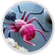 Frosty Ant In Winter Round Beach Towel