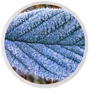 Frosty Leaf Round Beach Towel