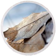 Frosty Leaves In The Morning Sunlight Round Beach Towel