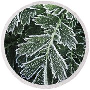 Frosty Leaves Macro Round Beach Towel