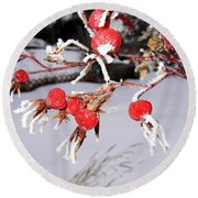 Frosty Rosehips Round Beach Towel