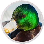 Mallard On Ice Round Beach Towel