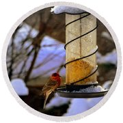 Frozen Feeder And Disappointment Round Beach Towel