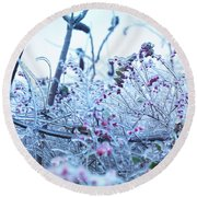 Frozen In Ice Nature Round Beach Towel