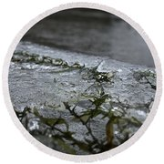 Frozen Milfoil Round Beach Towel