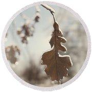 Frozen Oak Leaf Abstract Nature Detail Round Beach Towel