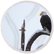 Frozen Perch Round Beach Towel