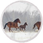 Frozen Track Round Beach Towel by Mike  Dawson