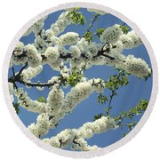 Fruit Tree Blooms Round Beach Towel