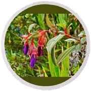 Fuchsia Along The Trail To Huayna Picchu-peru Round Beach Towel