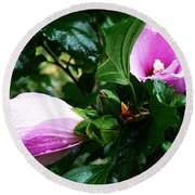 Fuchsia Flowers Laced In Droplets Round Beach Towel