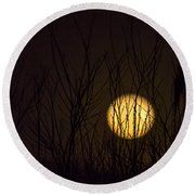 Full Moon Behind The Trees Round Beach Towel
