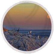 Full Moon Gathering Of Capricorn Round Beach Towel