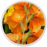 Full Stem Gladiolus Round Beach Towel