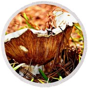 Fun Fungus Round Beach Towel