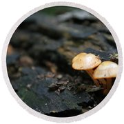 Fungus 9 Round Beach Towel