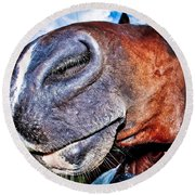 Funny Horse Round Beach Towel