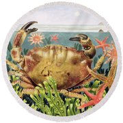 Furrowed Crab With Starfish Underwater Round Beach Towel