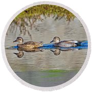 Gadwall Pair Swimming Together Round Beach Towel