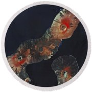 Galapagos Islands Round Beach Towel