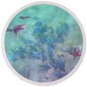 Galapagos Islands From Under Water Round Beach Towel