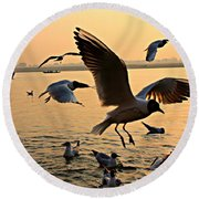 Ganges River Gulls Round Beach Towel
