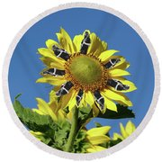 Garciacat Sunflower Round Beach Towel