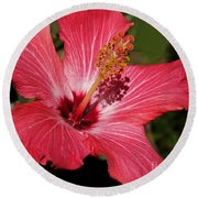 Garden Beauty Round Beach Towel