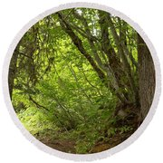 Garibaldi Old Growth Cedars Round Beach Towel
