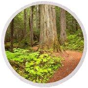 Garibaldi Wilderness Rainforest Round Beach Towel